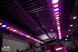 chambre de culture led système d éclairage pour chambre de culture à led metro 4 pgl