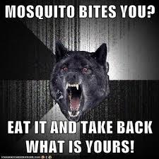 Insanity Wolf Meme - insanity wolf know your meme