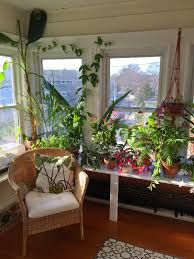 lovely indoor garden room design 800x1082 thehomestyle co