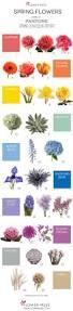 Pantone Color 2017 Spring Best 10 Spring Wedding Flowers Ideas On Pinterest Spring