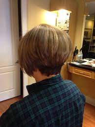 light brown hair with natural honey colored highlights cut into