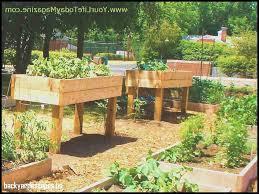 backyard escapes wondrous home depot garden city ks lovely backyard escapes home
