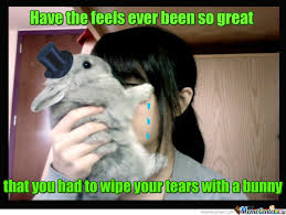 Funny Bunny Memes - bunny feels by recyclebin meme center