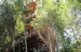 chambre d hote cabane dans les arbres chambre d hôtes cabane dans les arbres deluxe à chdray vosges