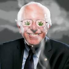john hudak bernie sanders calls for marijuana legalization