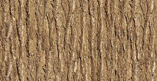 wooden tree texture wallpaper wall decor