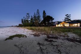 beach house designs perth oswald homes