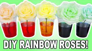 tie dye roses diy rainbow roses