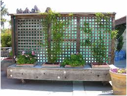 backyards terrific movable privacy fence on casters with built