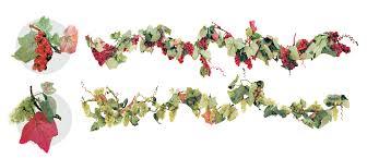 sukkah decorations grape cluster garland sukkah decoration