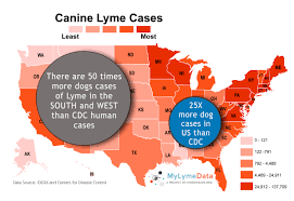 Map Of Georgia And Florida Canine Maps Predict Lyme Disease Risk Better Than Cdc Does