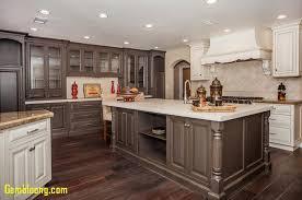 dark cabinet kitchens kitchen fresh dark cabinet kitchens jeannineclontz com