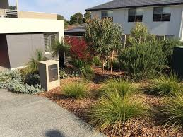native australian plants native garden perth wa landscape