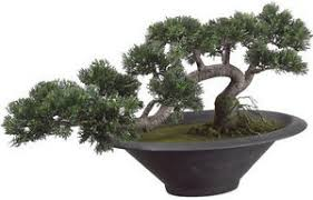 16 25 wide artificial in outdoor cedar bonsai tree topiary