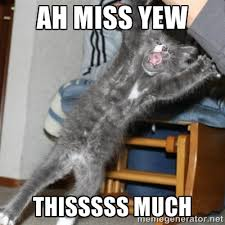I Miss You Funny Meme - 20 funny i miss you memes for when you miss someone so bad