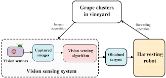sensors free full text robust grape cluster detection in a