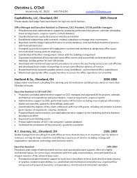 sample real estate private equity resume