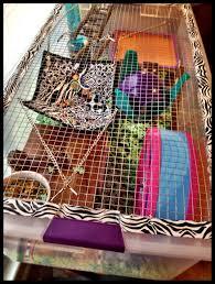 How Much Is A Hamster Cage Bin Cages Hammy Happenings