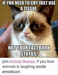 Memes For Lovers - cat lover meme 5 cat and dog lovers cat and dog lovers