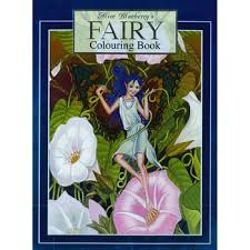 Alice Blueberry U0027s Fairy Colouring Book Peter Haddock