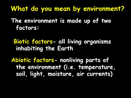 ecology notes ppt