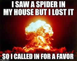 I Saw A Spider Meme - nuclear explosion meme imgflip