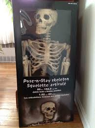 posable skeleton costco 2013 poseable skeletons arrived archive hauntforum