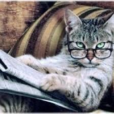 Newspaper Meme Generator - cat newspaper meme av meme generator