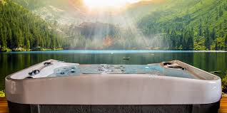 Bathtub Swimming Pool Motor City Tubs