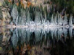 winter frosts trees along lake in rocky natgeotravel