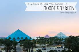 5 reasons to take your toddler to moody gardens cclgalv the