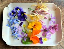 edible flowers for sale where to buy edible flowers edible flower cake decorating guide