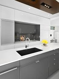 Painting High Gloss Kitchen Cabinets High Gloss Kitchen Cabinet Houzz Cabinets Lofty Design 14 Trending