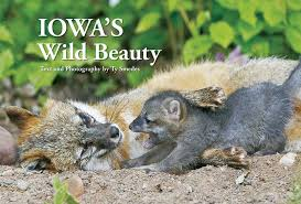 Iowa Wildlife Tours images Ty smedes nature photography home page jpg