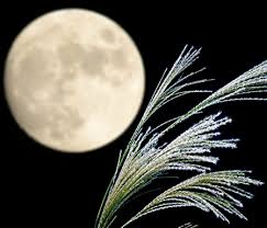 what is the meaning of japanese moon festival otsukimi