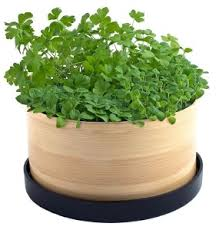 Herb Garden Pot Ideas 10 Easy Kitchen Herb Garden Ideas To Grow Culinary Herbs