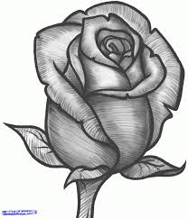 simple pencil sketch of rose great drawing