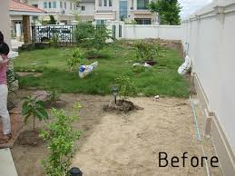 Low Maintenance Garden Ideas Low Maintenance Garden In Bangkok Thai Garden Design