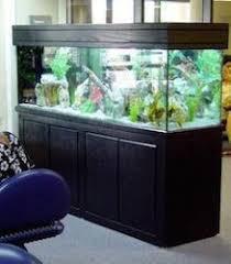 Aquarium Room Divider Custom Design Glass Aquariums U2013 Das Aquariums