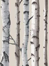 Prepasted Wallpaper Silver Birch Wallpaper Interesting Another Alternative To Free
