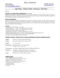 sle resume of ndt engineer 28 images restaurant inspector