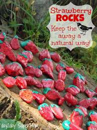 Garden Stone Craft - 26 fabulous garden decorating ideas with rocks and stones rock