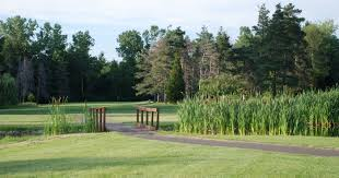 public golf course rochester area macedon crooked pines golf club
