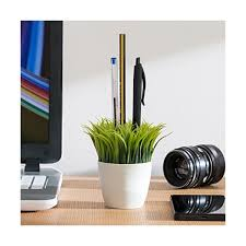 plante bureau pot à crayon plante verte bureau stylo herbe 685