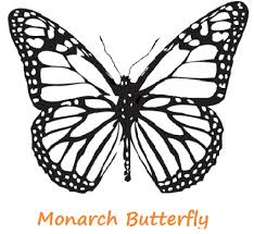monarch butterfly coloring page glum me