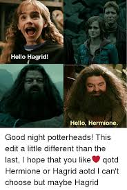 Hermione Memes - hello hagrid hello hermione good night potterheads this edit a