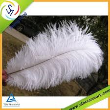 Ostrich Feather Centerpieces Wholesale by Ostrich Feather Centerpiece Ostrich Feather Centerpiece Suppliers