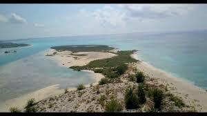 iguana island iguana island grace bay turks and caicos 2017 raw video from
