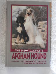 8 month old afghan hound the new complete afghan hound constance o miller edward gilbert