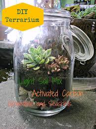 diy succulent terrarium sd hydro